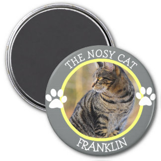 THE NOSY CAT: Humorous  Pawprints Photo Button Magnet