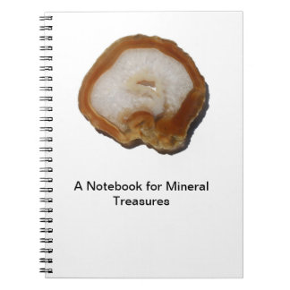 The Notebook of the Geologist