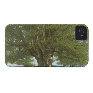 The Oak of Flagey, called Vercingetorix iPhone 4 Cover