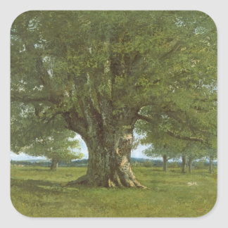 The Oak of Flagey, called Vercingetorix Square Sticker