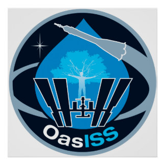 The OASISS Mission Poster