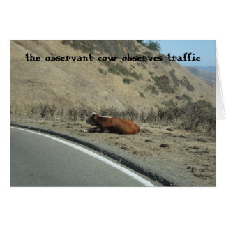 the observant cow greeting card