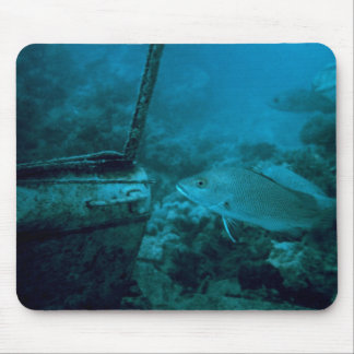 The Ocean Floor Mouse Pad
