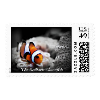 The Ocellaris Clownfish Postage Stamps