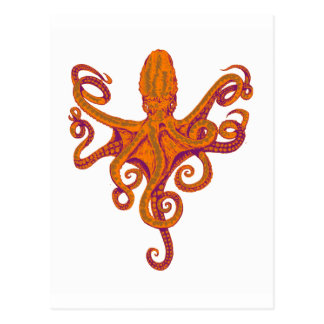 The Octopus Level Post Card