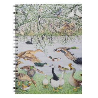 The Odd Duck Notebook