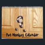 """The Official Pet Monkey Calendar<br><div class=""""desc"""">This is The Official Pet Monkey 2012 Calendar</div>"""