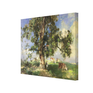 The Old Ash Tree (oil on canvas) Stretched Canvas Print