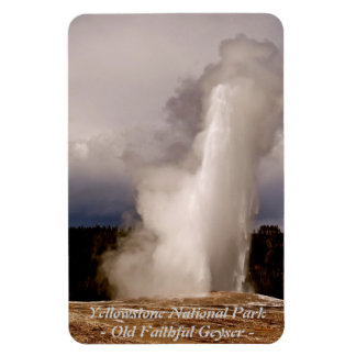 THE OLD FAITHFUL GEYSER IN YELLOWSTONE PARK RECTANGULAR MAGNET
