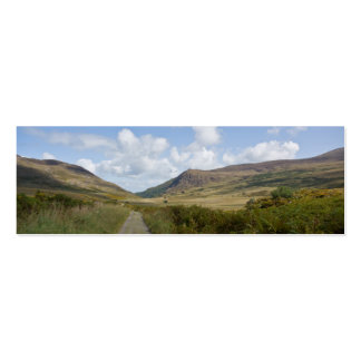 The Old Kenmare Road Mini Business Card