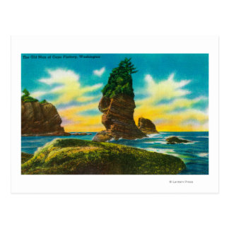 The Old Man of Cape Flattery, WA Postcard