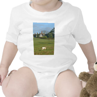 The Old Manor House, Wingrave Bodysuits