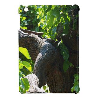 The old mulberry tree iPad mini case