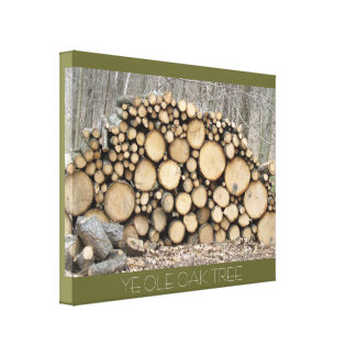 THE OLD OAK TREE GALLERY WRAPPED CANVAS