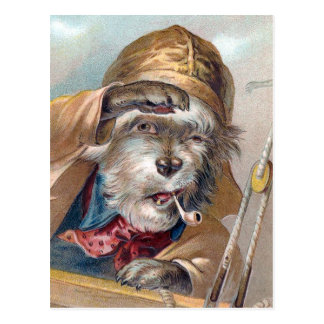"""The Old Sea Dog"" Vintage Postcard"