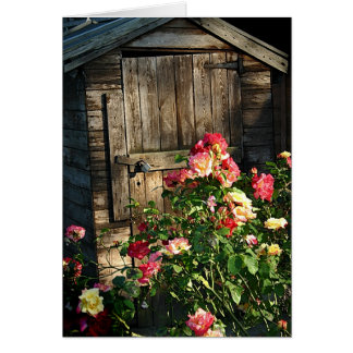The old shed and the Roses Card