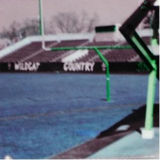 THE OLD STADIUM STANDING PHOTO SCULPTURE