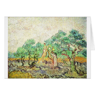 The Olive Orchard - Vincent Van Gogh (1889) Card