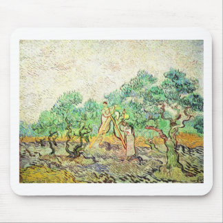 The Olive Orchard - Vincent Van Gogh (1889) Mouse Pad