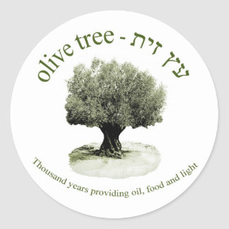 The olive tree, Thousand years providing oil, food Classic Round Sticker