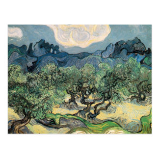 the olive trees,1889, Vincent van Gogh Postcard