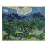 The Olive Trees by Vincent Van Gogh Print