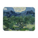 The Olive Trees - Van Gogh Flexible Magnet