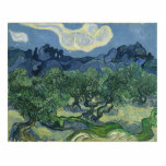 The Olive Trees - Van Gogh Photo Cut Out