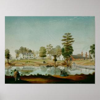 The Olivier Plantation, 1861 Poster