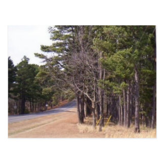 The Open Road Postcard