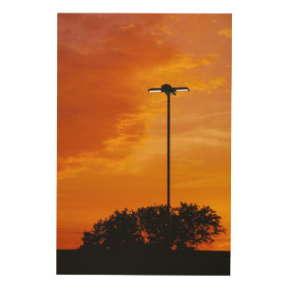 The Orange Sky Wood Print