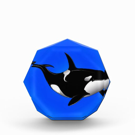 THE ORCA DREAM ACRYLIC AWARD