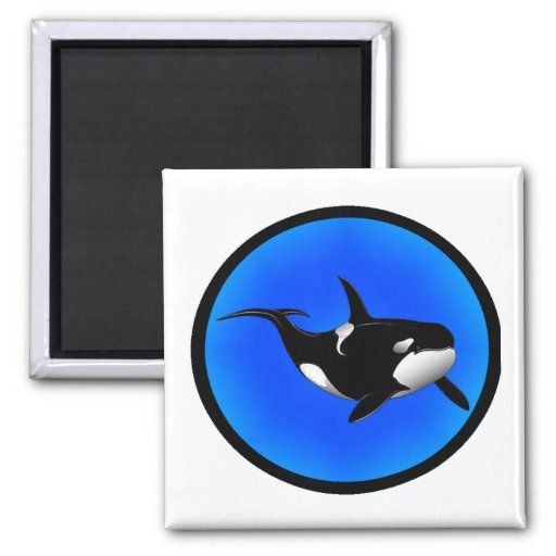 THE ORCA DREAM MAGNETS