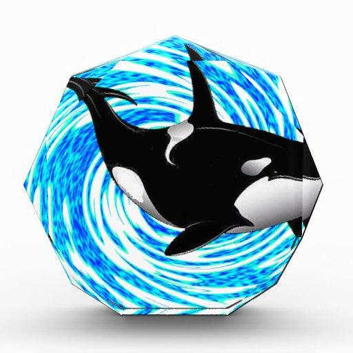 THE ORCA DREAMS AWARD