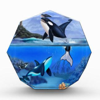 The Orca Family Acrylic Award