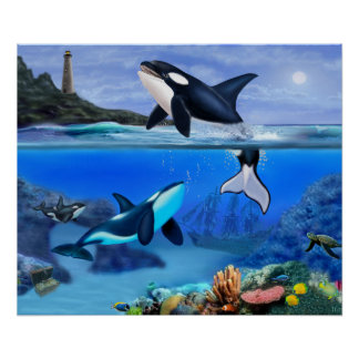 The Orca Family Poster