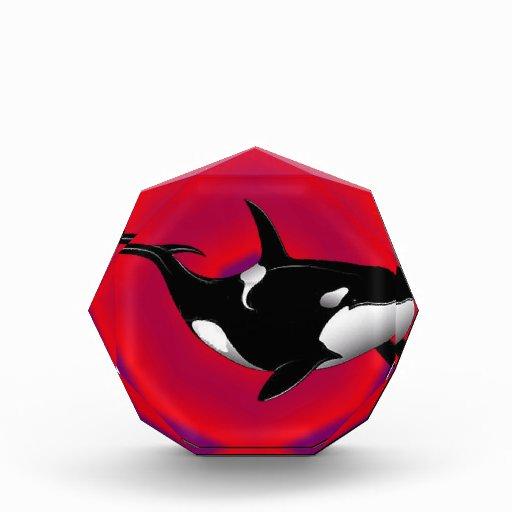 THE ORCA REALM AWARD