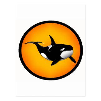 THE ORCA SUN POST CARDS