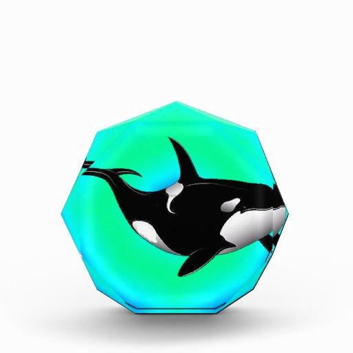 THE ORCA VISION AWARDS