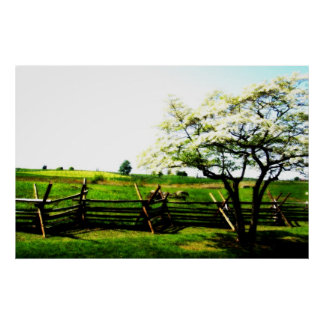 The Orchard Beyond The Fence Posters