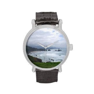 The Oregon Coast Weather Watches