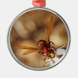 The Oriental Hornet Orientalis Ornaments
