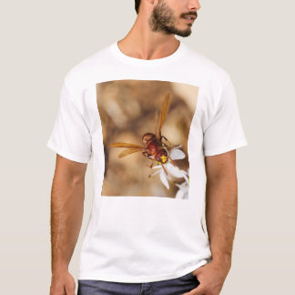 The Oriental Hornet Orientalis T-Shirt