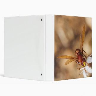 The Oriental Hornet Vespa Orientalis 3 Ring Binder