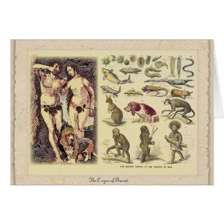 The Origin of Basset Greeting Card