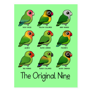 The Original Nine Postcard