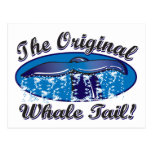 The-Original-Whale-Tail Post Cards