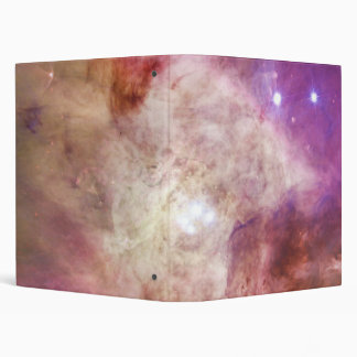 The Orion Nebula's Biggest Stars Messier 42 M42 Binder