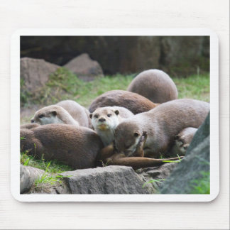 The otter family mouse pad