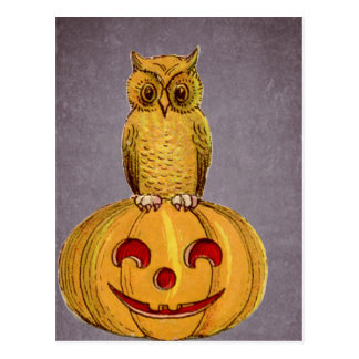 The Owl and the Jack O Lantern Postcard